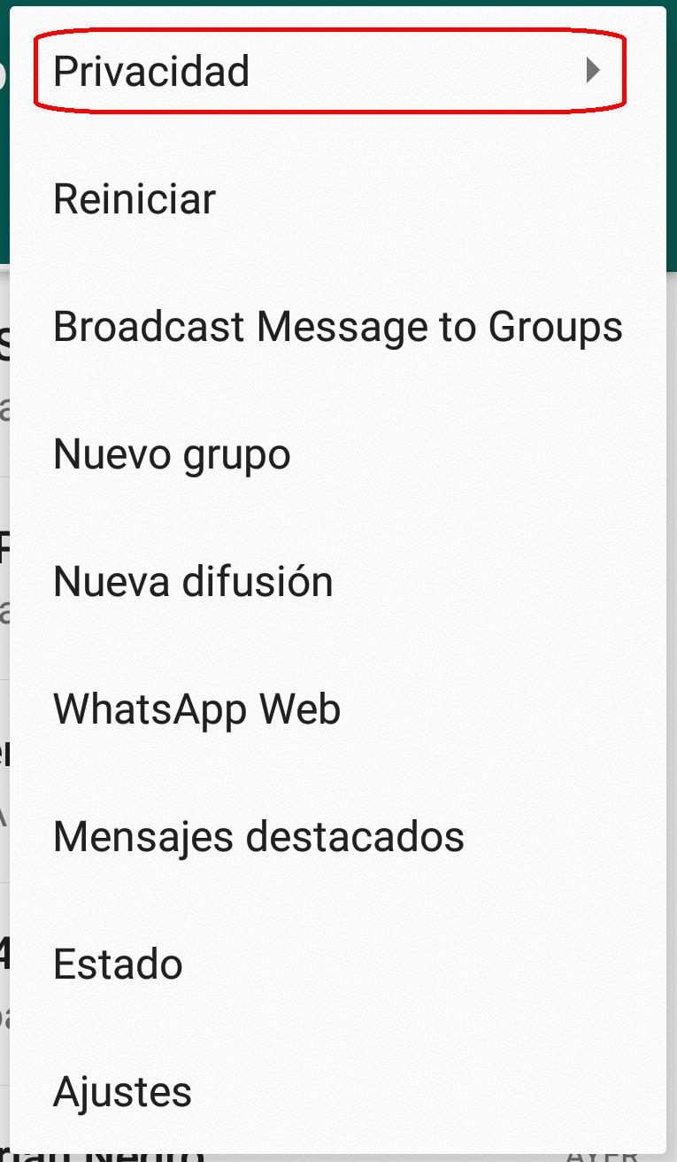 privacidad gbwhatsapp mini