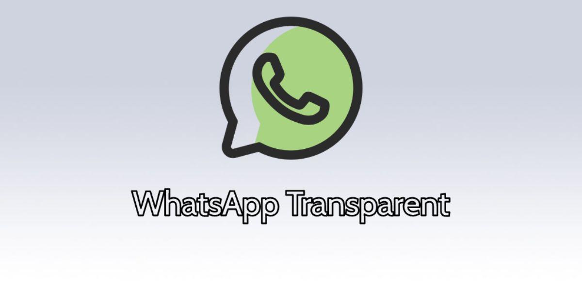 Whatsapp transparente 2019
